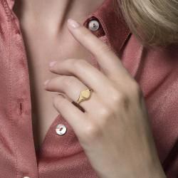 Blush Ring Zegelring 1205YGO Geelgoud MAAT 16 - 47829