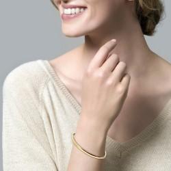 Blush Slaven Armband 2155YGO Geelgoud - 46555