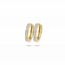 Blush Diamonds earrings - 47247